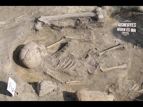 Középkori temetőre bukkantak Bácsfeketehegy mellett