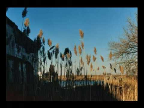 The Cinematic Orchestra - Breathe (ft. Fontella Bass)