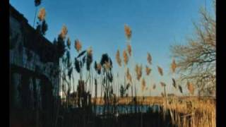 The Cinematic Orchestra Breathe Ft Fontella Bass