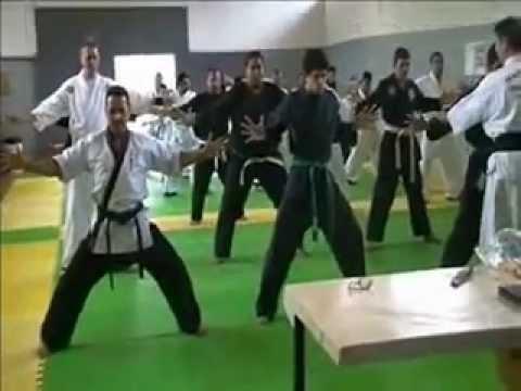 Hapkido - Exame de Faixa Preta 4º Dan - FBHT