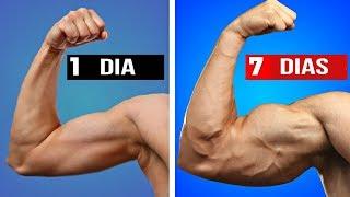 TOP 05 MANERAS DE AUMENTAR TUS BICEPS