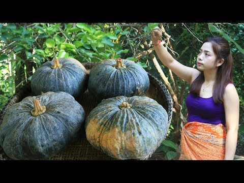 Yummy cooking dessert pumpkin recipe - Cooking skill