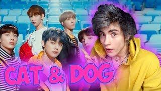 TXT (투모로우바이투게더) 'Cat & Dog' Official MV Реакция | Реакция на Txt Cat Dog Reaction