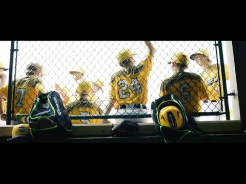 The Easton Experience at the 2015 Little League Baseball® World Series