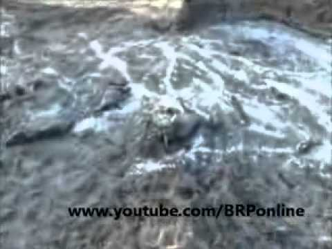 Pakistan Military offensive in RD 238, Dera Bugti, Balochistan - YouTube.3GP