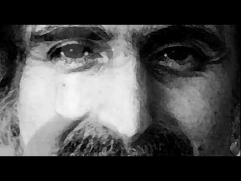 Frank Zappa - The Idiot Bastard Son