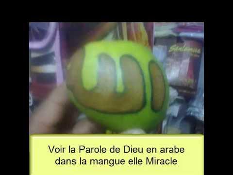 Voir La Parole De Dieu Et Mohamed En Arab Dans La Mangue Elle Miracle video