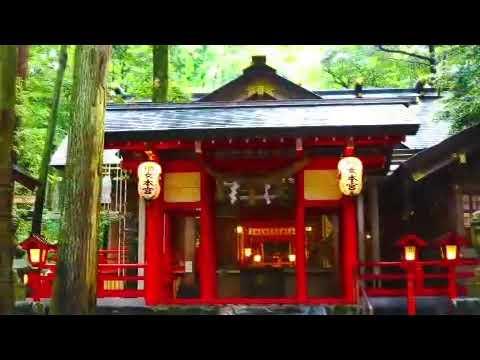 映像制作実績:椿大神社