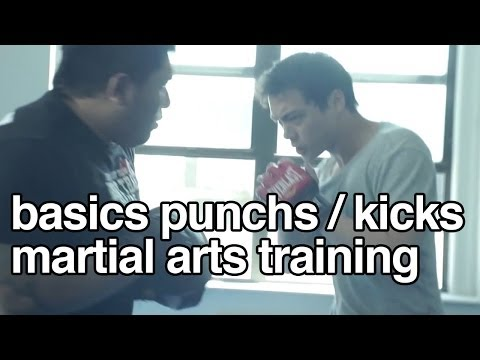 Training : Basics of kickboxing punch/kick on focus pad Image 1