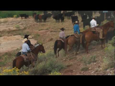 A Tour of Singleton Ranches, Part 1