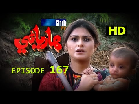 Hareyani Ep 167 -Sindh TV Soap Serial  - 16-1-2018 - HD1080p -SindhTVHD-Drama