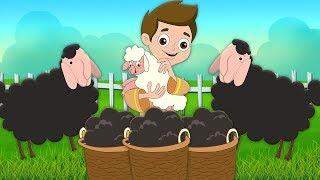 Baa Baa cừu đen | Songs | Baa Baa Black Sheep | Kids Tv Channel Vietnam | nhac thieu nhi hay nhất