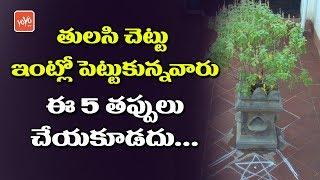తులసి చెట్టు ఇంట్లో పెట్టుకున్నవారు ఈ 5 తప్పులు చేయకూడదు | Tulasi Plant Tips