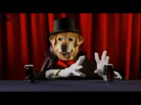 Cartoon Network - Houndini: Dog Magician - YouTube
