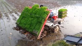 Intelligent Farming & Agriculture Technology - Amazing Homemade Invention Machine