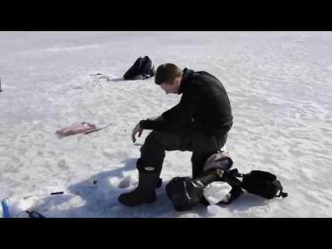 запрет ловли на плещеевом озере