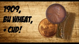 1909, BU WHEAT, AND CUD! -Coin Roll Hunting-