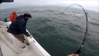 BIG Striped Bass, 7-ounce Rod, Surprising Outcome!
