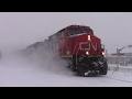 BLIZZARD WARNING! CN Stack Train 120 at Moncton, NB during Major Snowstorm (Feb 13, 2017)