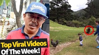 Top 50 Best Viral Videos Of The Month So Far (November 2019 - Wk1)