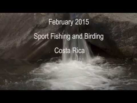Majestic Feathers Costa Rica Sport Fishing and Birding Adventure
