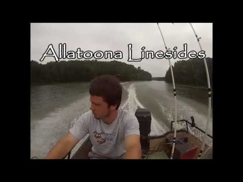 Lake Allatoona Linesides Part 1