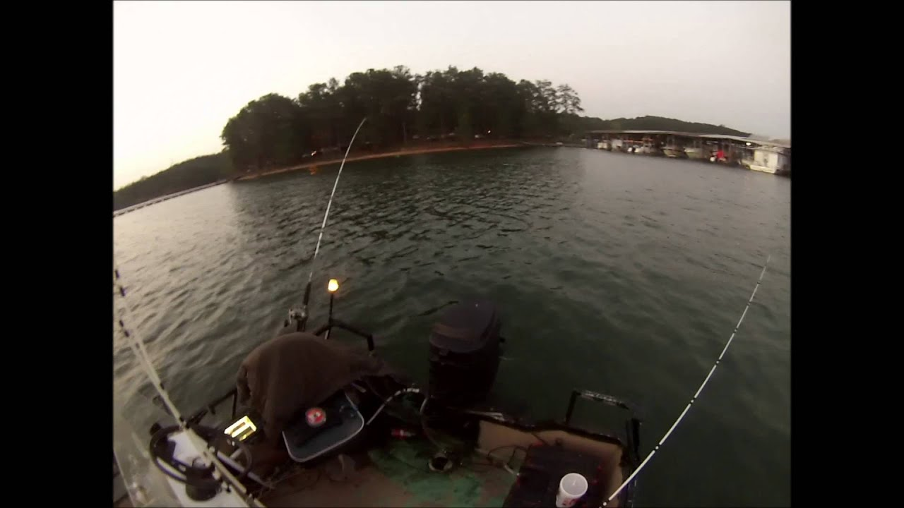 Lake allatoona linesides part 1 fishing central for Lake allatoona fishing guide