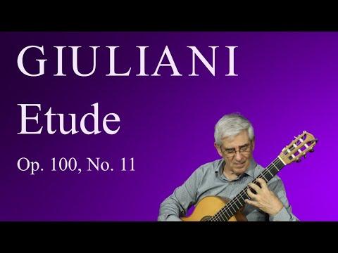 Джулиани Мауро - Op 11 No 11