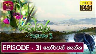 Sobadhara - Sri Lanka Wildlife Documentary   2019-10-25 Horton Plains