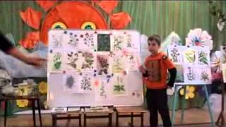 Конкурс воспитатель года открытое занятие по экологии