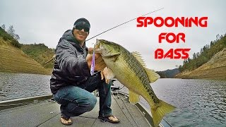 Lipless crankbaits tips tackle and techniques for fall for Winter bass fishing tips