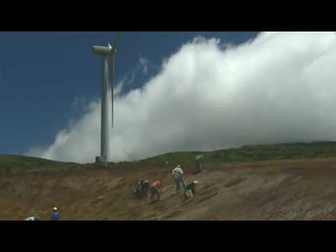 Clean Renewable Energy: Environmental Benefits of Wind Energy