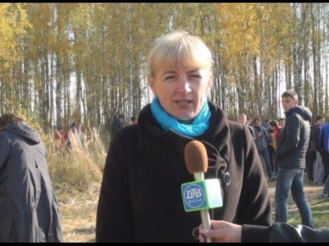 Десна-ТВ: День за днем: Золотая осень-2014
