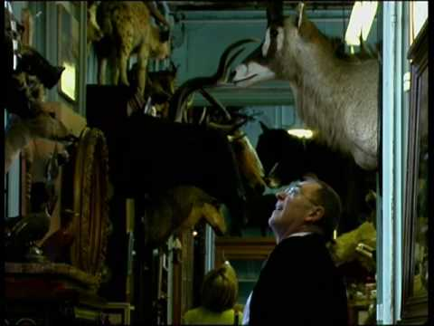 deyrolle taxidermist You Tube HQ