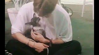 【GOT7】【王嘉尔】妈妈呀他好可爱!!瞬间想魂穿狗狗!
