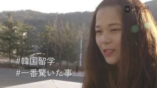 #20 #Karin's Life in KOREA #前編 #近大国際学部