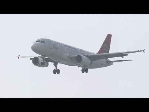 那覇空港 TransAsia Airways (GE/TNA) Airbus A320-200 B-22310 着陸 2014.3.31