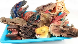 Dinosaur Heads!! Dino Hand Puppet Toys. Real And Scary Dinosaur Toys For Kids