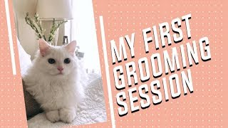 My First Grooming Session | Gauahar Khan