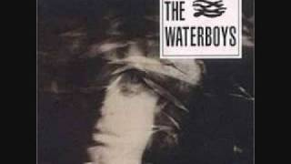 Watch Waterboys Savage Earth Heart video