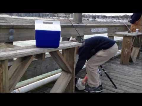 Surf and Pier Fishing: MYRTLE BEACH SC!