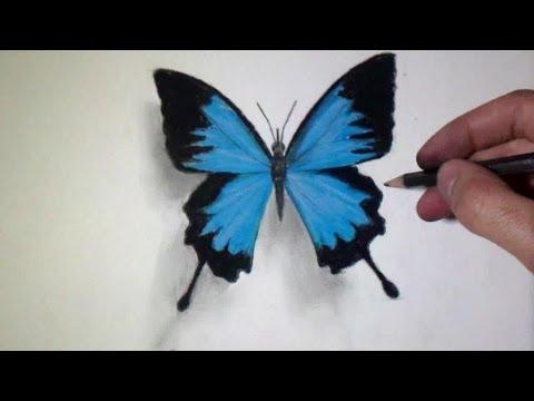 Comment dessiner un papillon tutoriel youtube - Dessiner un papillon ...