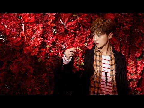 LuHan - Winter Song MV (Legendado em PT-BR)