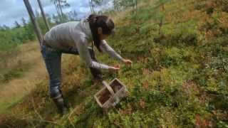 Work in Finland - Meet Clara from Singapore - promotional films for the Finnish Government