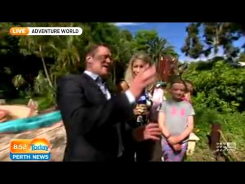 Adventure World Dinosaur Island, part two | Today Perth News