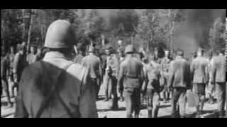 Westerplatte film fabularny, reż. Stanisław Różewicz
