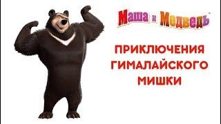 Маша и Медведь - Приключения Гималайского Мишки
