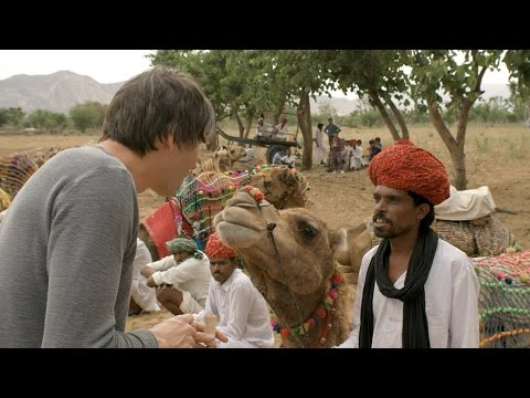 How similar is Brian Cox to a camel? - Human Universe: Episode 2 Preview - BBC Two