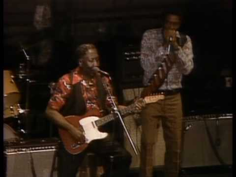 Muddy Waters - I'm A King Bee - ChicagoFest 1981
