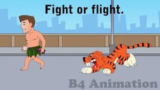 The Stress Response- Fight or Flight